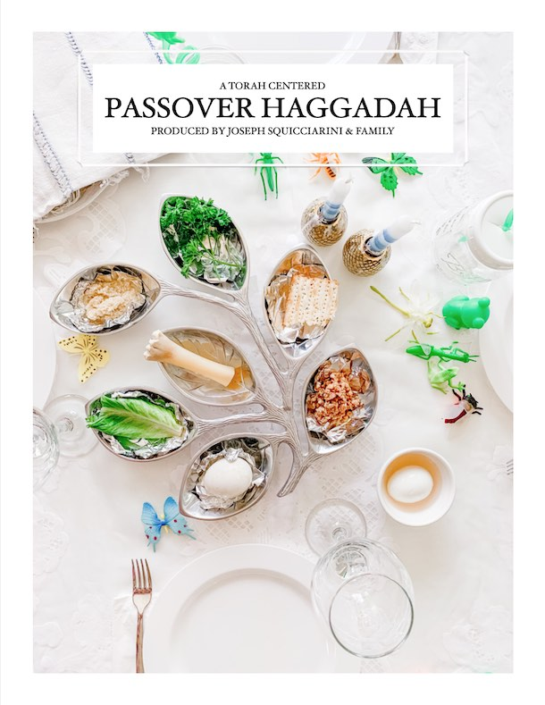 Passover Haggadah 5780 Cover